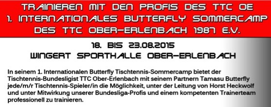 images/artikel/14-15/Butterfly Sommercamp 2015 Flyer - Edited.jpeg
